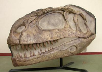 Dinosaurio de 90 millones de años