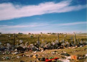 La contaminación ambiental en la Argentina
